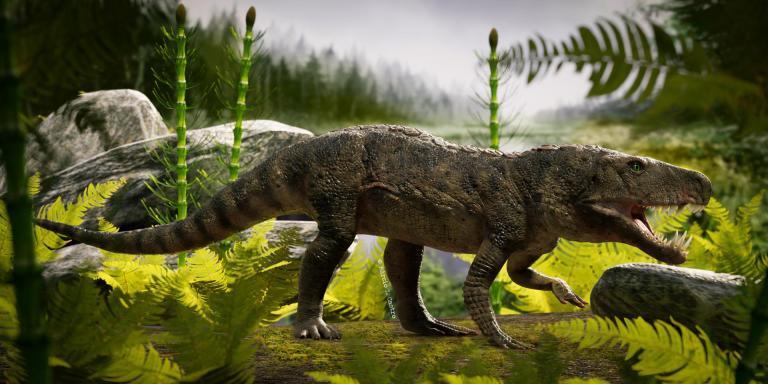 """Reprodução do habitat da espécie """"Dynamosuchus collisensis"""""""