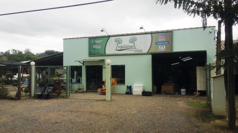 Sonho, planejamento e muito trabalho: Comercial Tipuanas celebra 11 anos de uma trajetória de sucesso