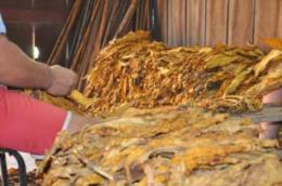 Fentifumo sugere repasse do Índice Nacional de Preços ao Consumidor aos trabalhadores