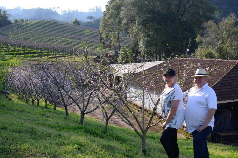 Sara e Valdomiro contemplam as Videiras do Vale, projeto que nasceu para diversificar culturas e atrair turistas