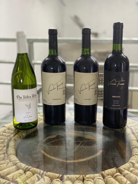 Vinhos produzidos na Vinícola Thomasi