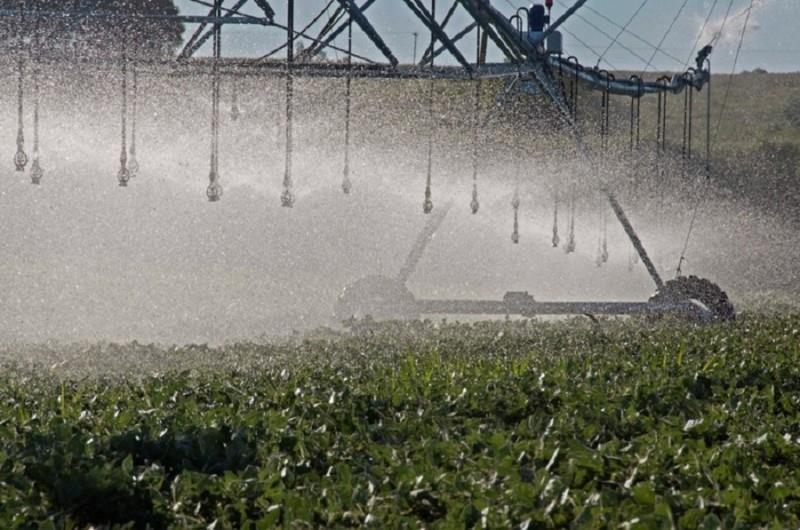 Irrigação é importante instrumento para manter a produção em períodos de pouca chuva