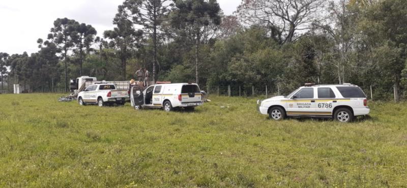 Caminhão havia sido roubado nesta quinta-feira na BR-290