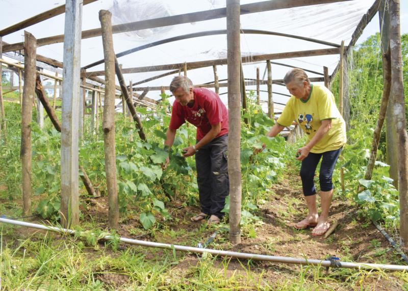 Com previsão de nova estiagem, entenda como produtores da região estão buscando se precaver