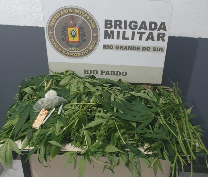 Idoso é preso com folhas de maconha em Rio Pardo