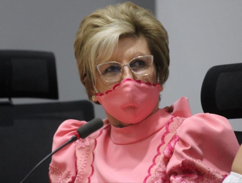 Helena Hermany altera estrutura do Comitê de Enfrentamento à pandemia