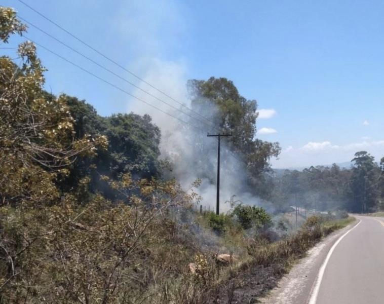 Bombeiros controlam fogo em vegetação na ERS-405 em Passo do Sobrado