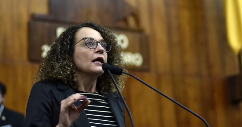 Parlamentar ofício nesta terça-feira ao Executivo pedindo informações detalhadas sobre os itens que compõem o custo da passagem no município