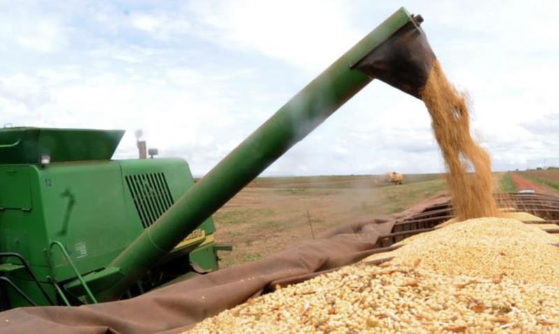 Brasil deve produzir 262,2 milhões de toneladas de grãos