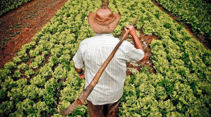 Iniciativa oferece condições para compra de imóvel rural