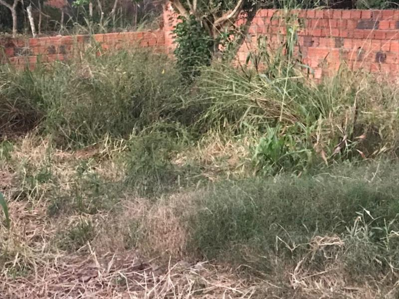 Situação preocupa a Unidade Central de Fiscalização Externa da Prefeitura devido ao aumento nos casos de dengue