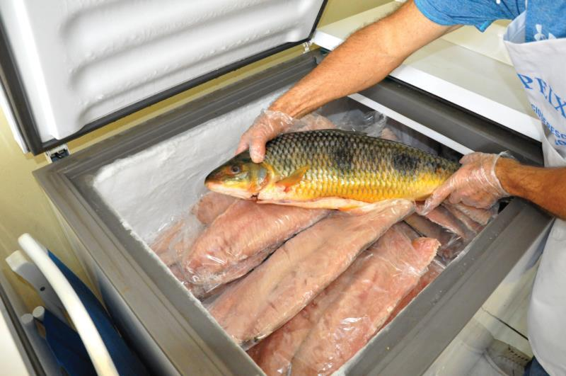 Consumidores ainda podem garantir o peixe para a Sexta-feira Santa