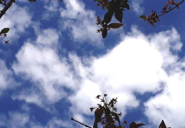 Feriadão de Páscoa será marcado por tempo firme em Santa Cruz e região