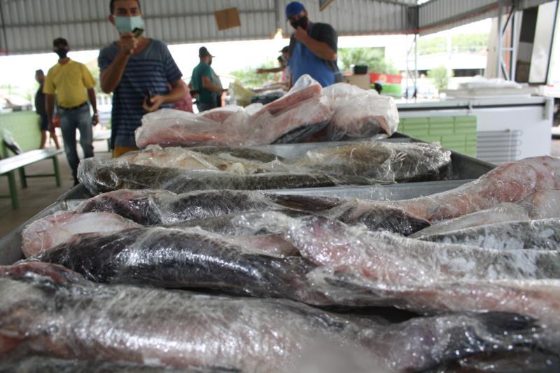 Feira do Peixe de Vera Cruz comercializou mais do que no ano passado e piscicultores destacam qualidade como diferencial