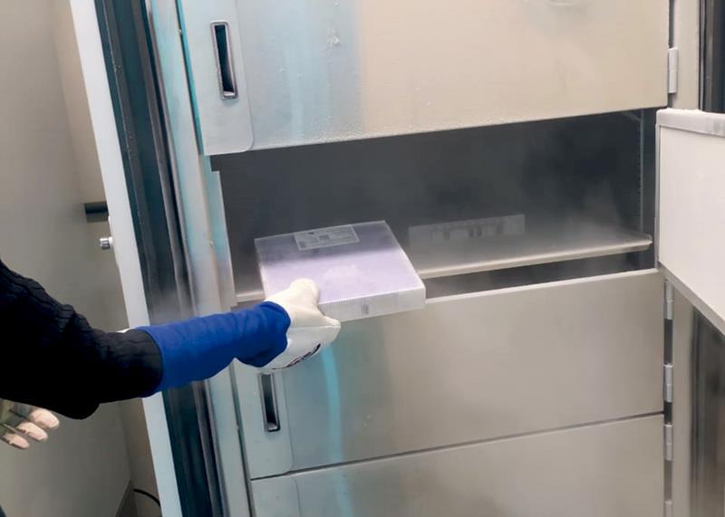 Ultrafreezers chegam a temperaturas de até -86°C