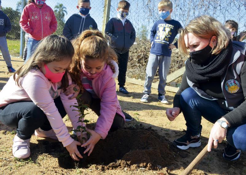Plantio de árvores em 29 escolas ocorreu na terça-feira
