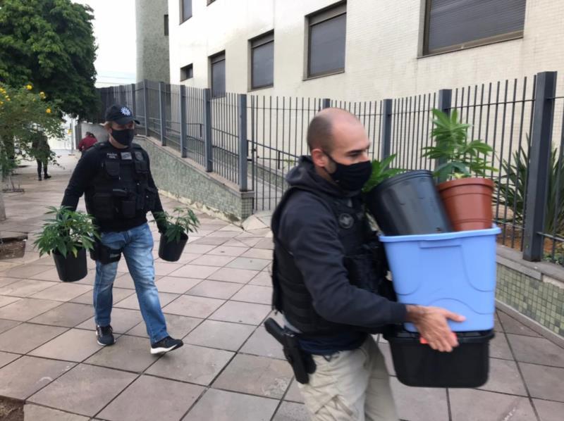 Draco prende homem com plantação de maconha dentro de apartamento em Santa Cruz