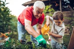 Arauto Saúde: a chegada na terceira idade