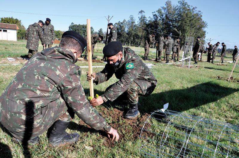 Mais de 40 militares estiveram em Vera Cruz para o plantio das árvores
