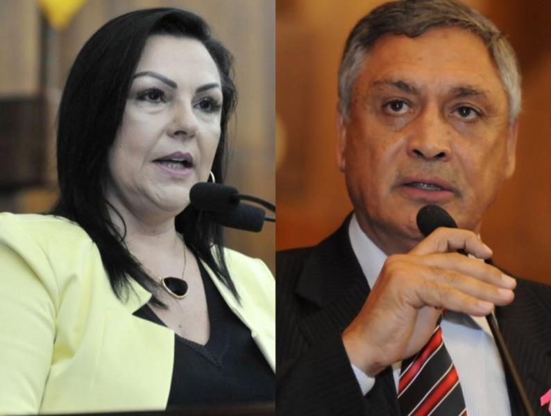 Saiba como votaram os deputados na região no projeto que autorizou governo a privatizar a Corsan