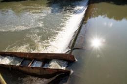 Falta de peixes no Rio Pardinho gera preocupação na Prefeitura de Santa Cruz